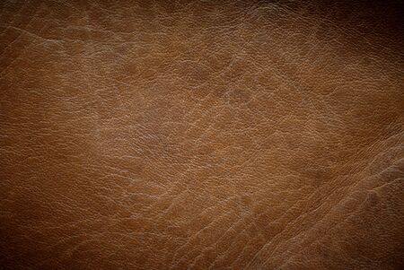 color skin brown: Brown leather texture horizontal orientation Stock Photo