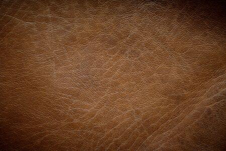 peau cuir: Orientation horizontale de la texture en cuir brun