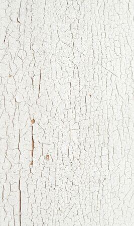 peeling paint: Peeling vernice su un alzato di sfondo bianco parete in legno.