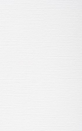white paper texture: Blank canvas textured paper Stock Photo