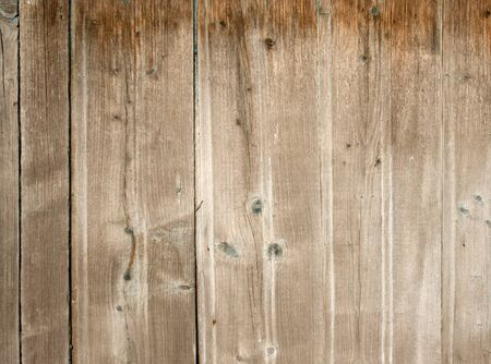 wood texture background: Old wood fence background.