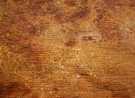 Wood texture with the old cracked varnish surface. Abstract design background. photo