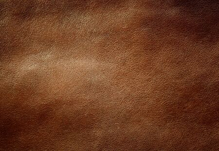 pelt: Brown shiny leather texture. Close up shot. Stock Photo
