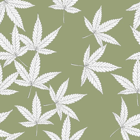 marijuana plant: Cannabis leaves, seamless pattern. Illustration
