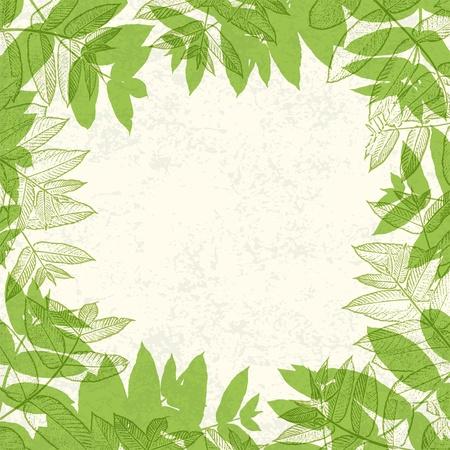 Groene bladeren frame op papier textuur.