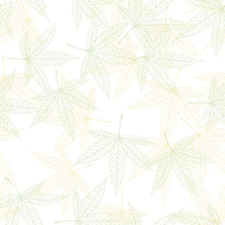 Hemp leaves seamless pattern photo