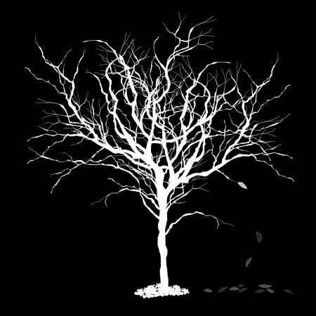 dying: Tree silhouettewith fallen leaves  Vector illustration, EPS8
