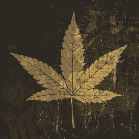 hemp: Cannabis leaf grunge icon. With stained texture   Illustration