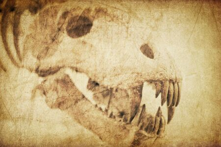 infernal: Spooky skull diabolical creatures. Vintage styled background Stock Photo
