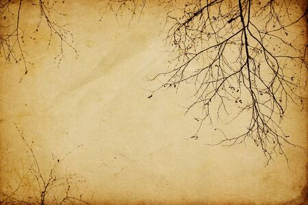 frayed: Vintage branches background Stock Photo