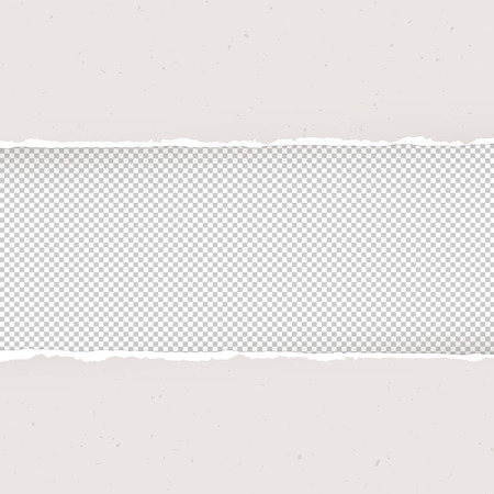 ripped paper: Torn paper on transparent background. Design template, Vector