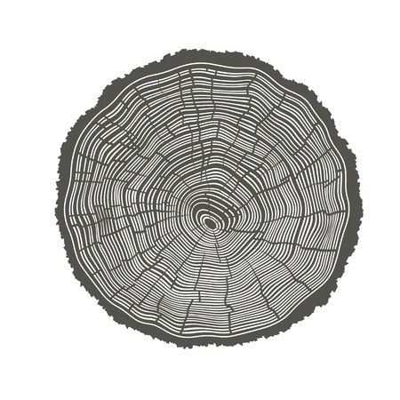rings on a tree: Tree Rings Illustration. Template for annual reports