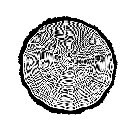 rings on a tree: Rings of a tree with cracks.
