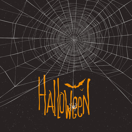 spider web: Halloween themed background with spider web and text