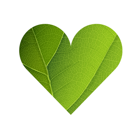 veins: Green Leaf Veins Texture Heart Shaped. Earth Day Concept Design. Isolated template