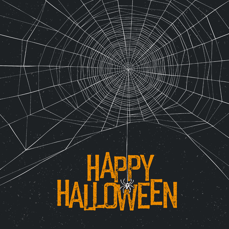 halloween spider: Halloween background with spider web and text