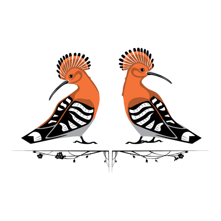 two orange hoopoes vector illustration isolated on white background.