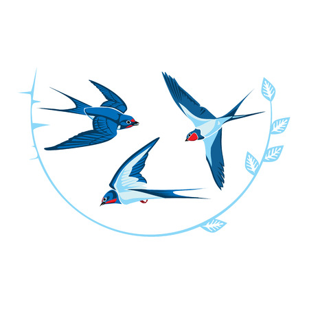three blue swallows in flight vector illustration isolated on white background. Иллюстрация