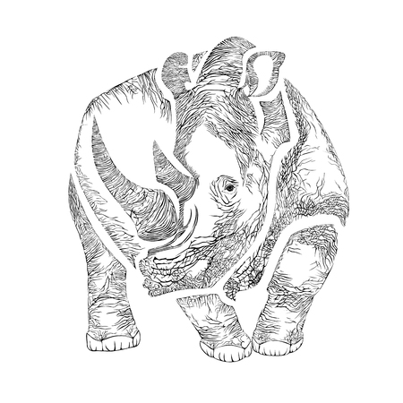 Vector image of a Rhino in the graphic style Illustration