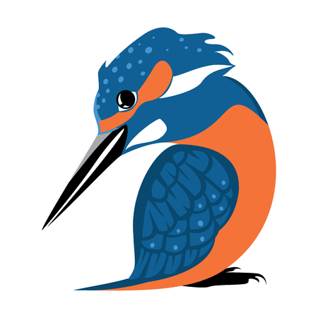 Sitting Kingfisher. Vector stylized color isolated image. 向量圖像