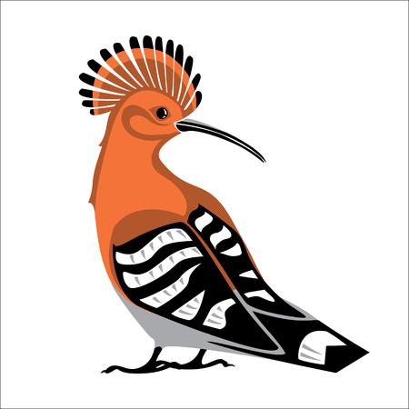 Uccello Upupa. Immagine stilizzata isolata di colore di vettore.