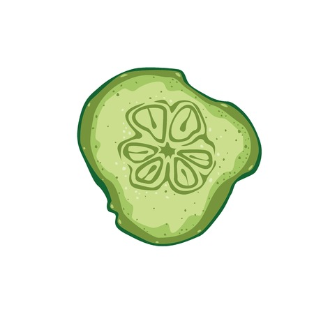 Cucumber slice. Menu or a recipe illustration. Fresh and tasty food or cooking ingredient isolated on white background.
