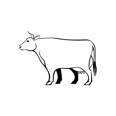 Cow, farm animal line icon. Vector stylized isolated color image.