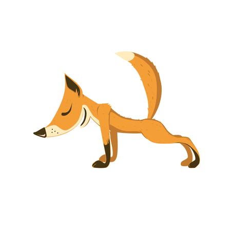 Fox does yoga. Surya Namaskara meditation. Ashtanga vinyasa yoga poses. Vector stylized isolated color image. 일러스트