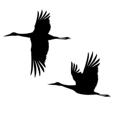 Two silhouettes of cranes flying in the sky. Vector monochrome isolated image.
