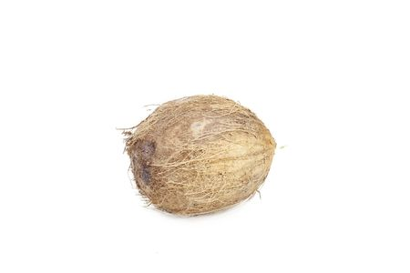 Coconut Stock Photo - 6162020