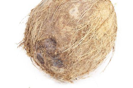Coconut on white Stock Photo - 6682732