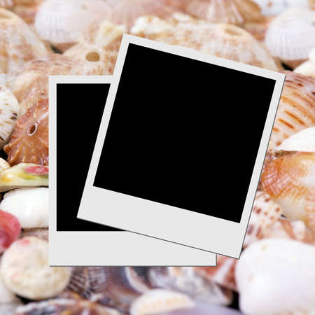 Photo frame on seashells  photo