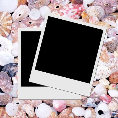 Photo frame on seashells background  photo