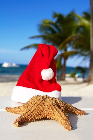 Santa hat and starfish on beach, caribbean