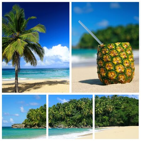 Caribbean sea collage. Beach with palm and and exotic coctail Stock Photo - 8861469