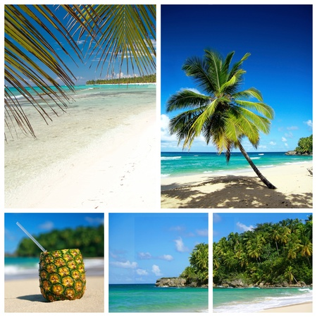 Caribbean beach collage. Beach with palm and and exotic coctail Stock Photo