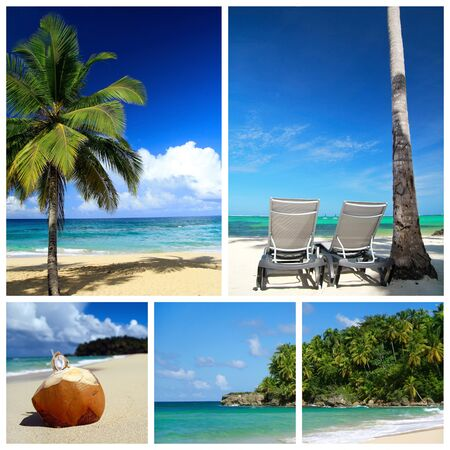 Tropical collage. Beach with palm and chaise longues photo