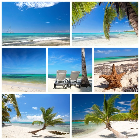 Chaise longues on tropical beach with palm photo