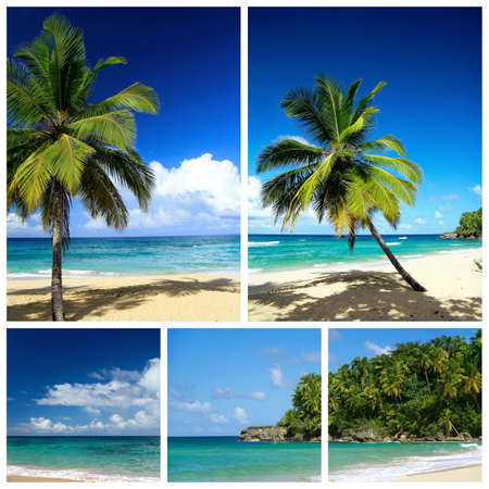 Caribbean beach collage. Playa Grande Stock Photo - 8861641