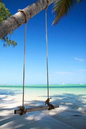 columpio: Subibaja de Palma en playa tropical Foto de archivo