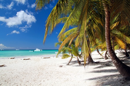 republic of dominican: Caribbean beach with white sand Stock Photo