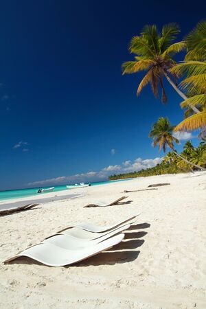 Caribbean beach with palms, paradise  photo