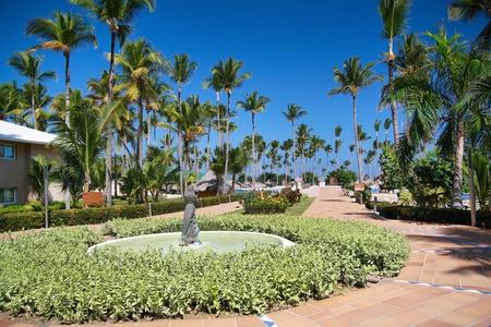 Luxury caribbean hotel resort, road to ocean Stock Photo - 11312149