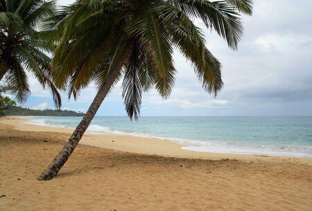 Caribbean beach in bad tropical weather photo