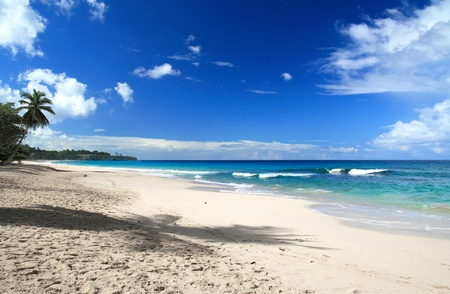 Caribbean sea beach photo