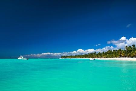 Beautiful caribbean beach on Saona island Stock Photo