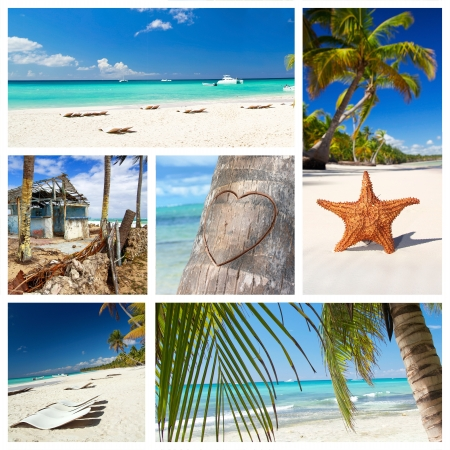 Caribbean nature collage with  tropical landscape