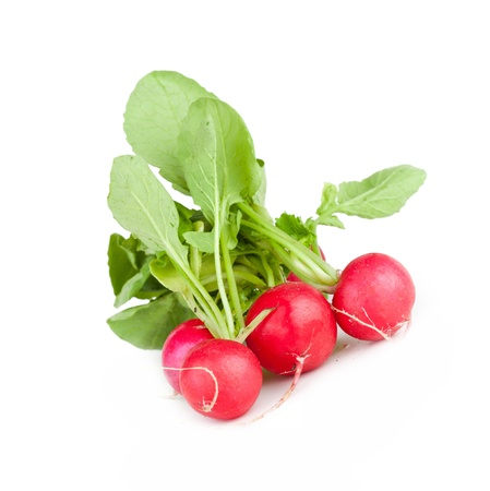 Several garden radish, closeup on white background photo