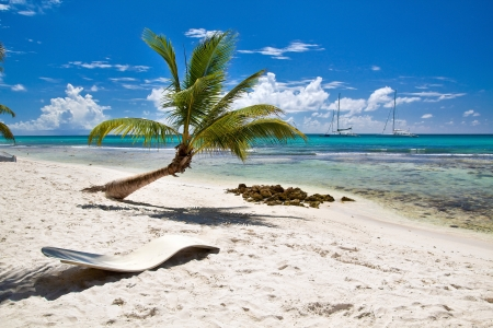 A beautiful image of caribbean paradise - Nature photo