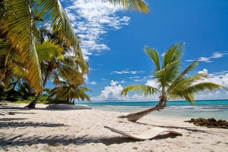 A beautiful image of caribbean paradise - Nature Stock Photo
